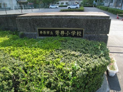 芳井小学校