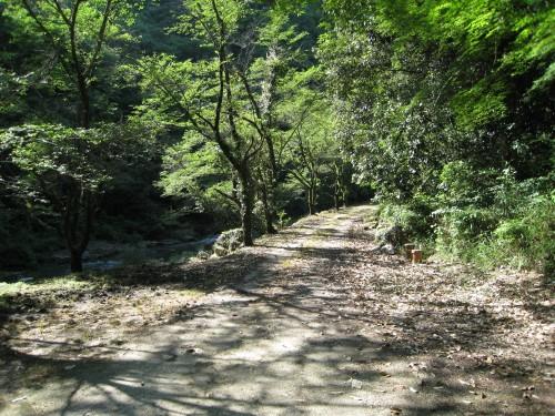 鬼ヶ嶽の渓谷