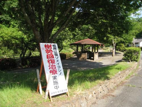 相原公園の周りの風景