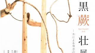 黒蕨 壮展-木による情念の追求-秋季特別展 第27回平櫛田中賞受賞記念【井原市】