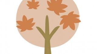 田中苑に来てみた・・・秋の紅葉が素晴らしい(楷の木がライトアップされる!?)の巻