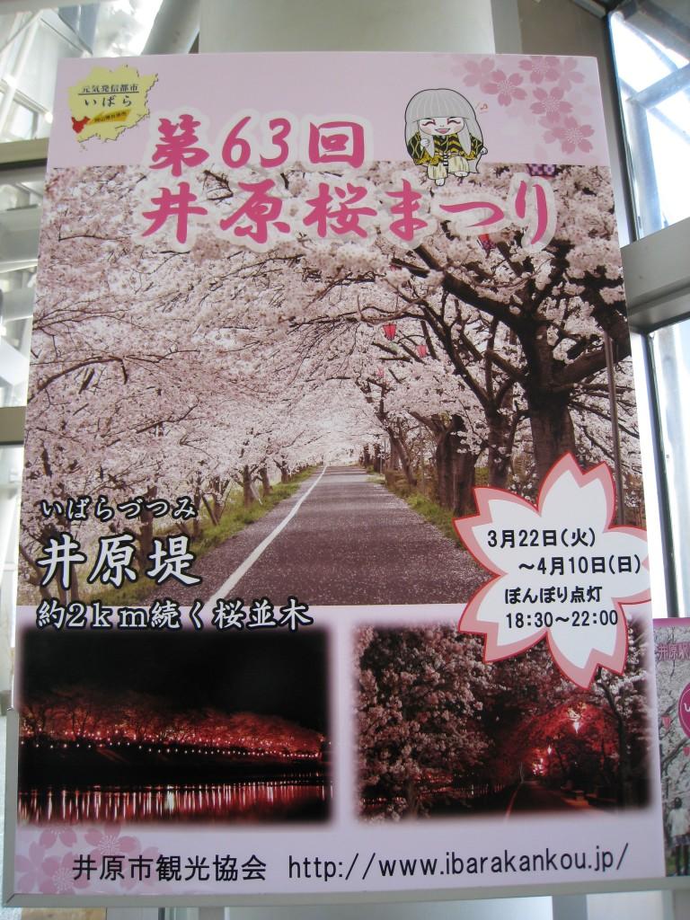 第63回 井原桜まつり