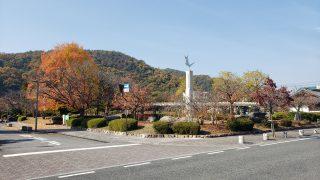 💛紅葉が見頃のピーク!!田中苑の木。癒しモード全開です。陽気日和な1日でした。【井原市】