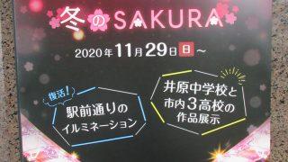 第17回 minakurune ミナクルネ 冬のSAKURAが始まるよ~!!2020/11/29~復活【井原駅前通り】